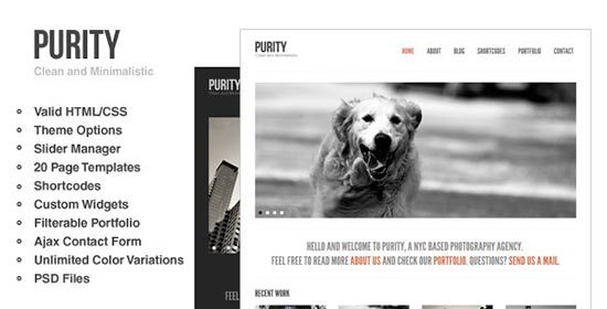 Purity-Wordpress-Theme